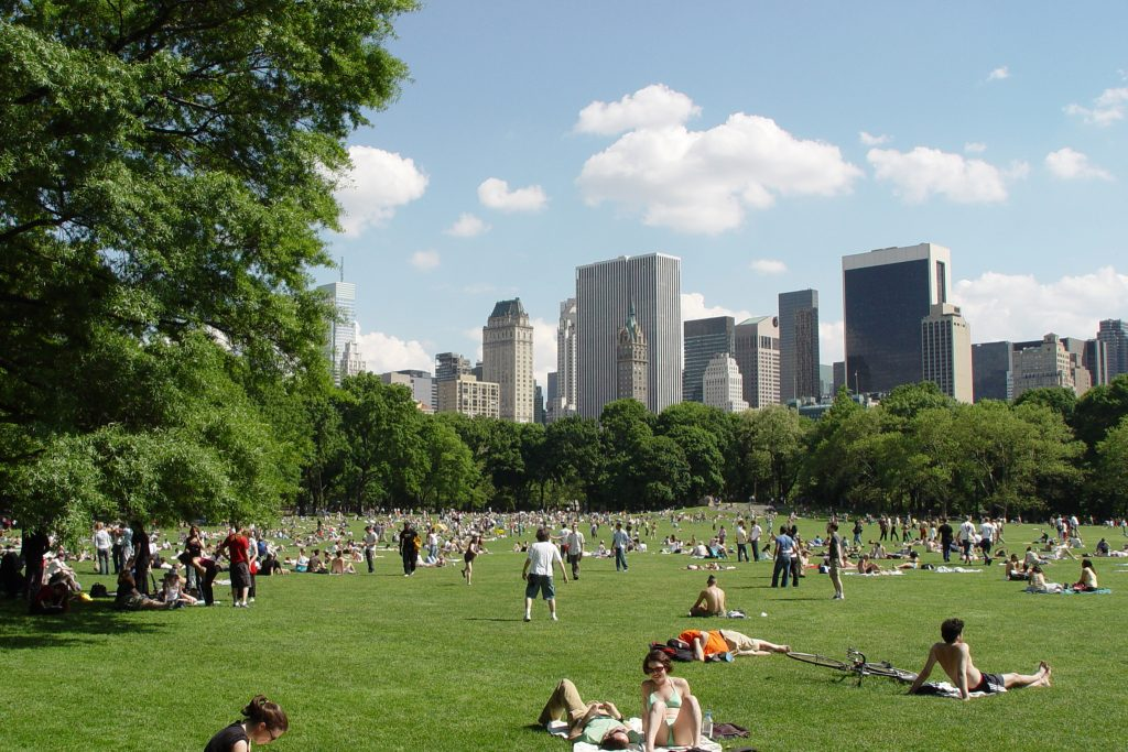 central park- things to do in nyc