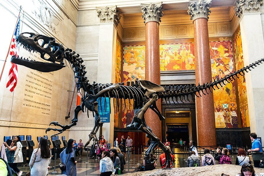 natural-history-museum-new-york-city