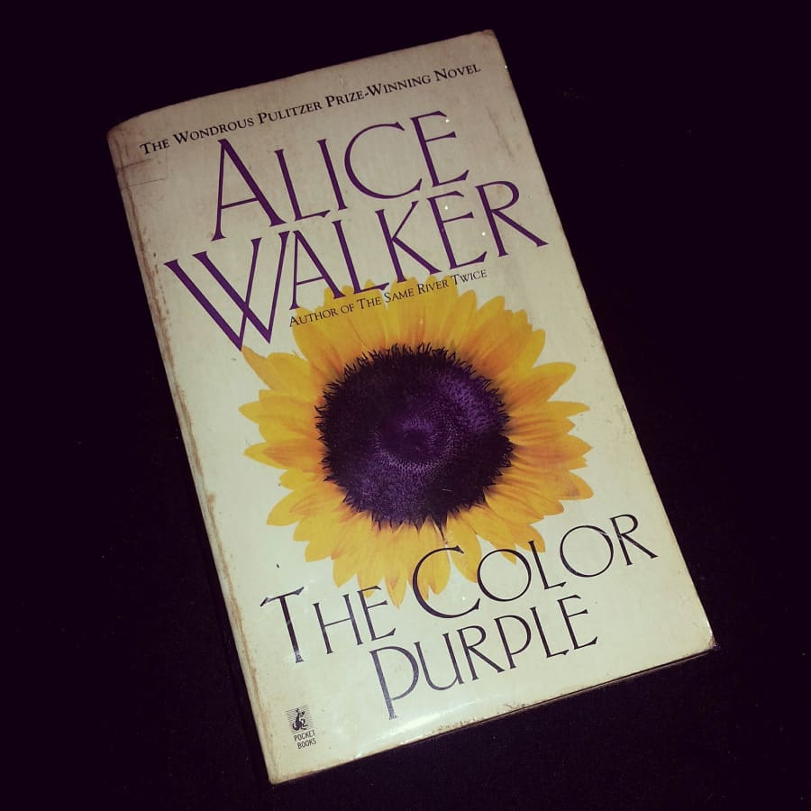 The Colour Purple by Alice Walker-best-books-of-all-the-time