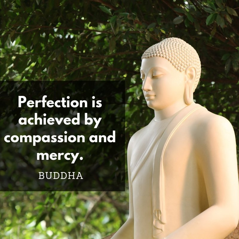 40 Insightful Buddha Quotes Which Improve Your Thoughts