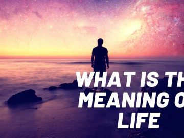 What Is The Meaning of Life