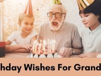Birthday Wishes For Grandpa!