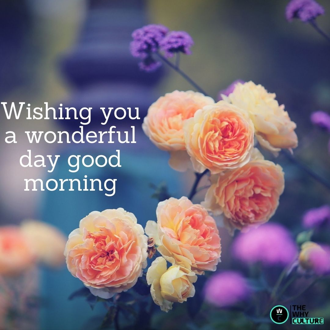 Cute good morning with flowers