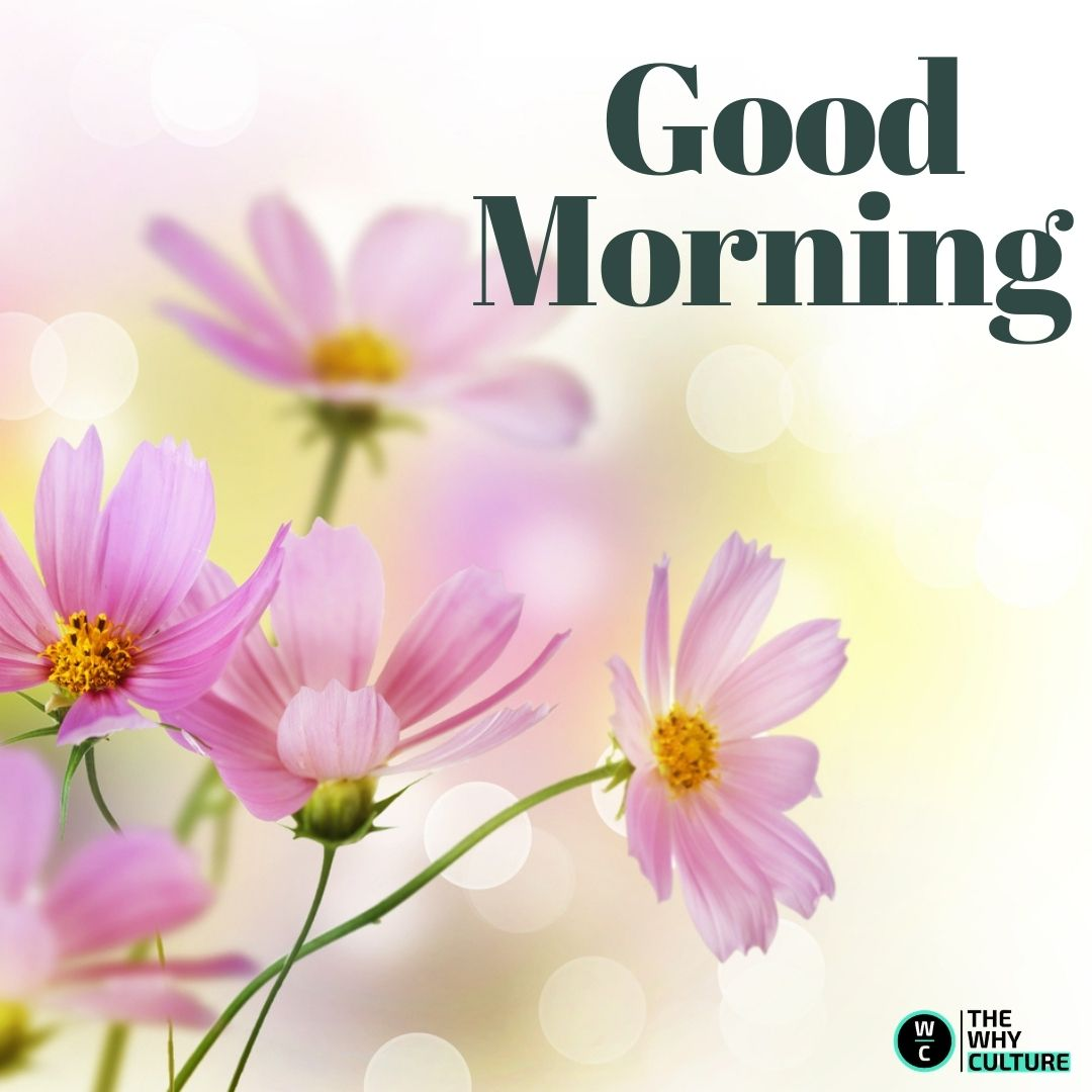 Good morning wish with single leaf flowers.
