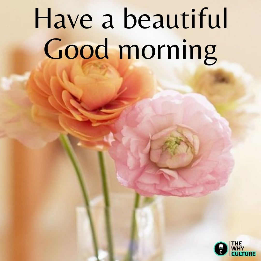 good morning flowers images with wishes