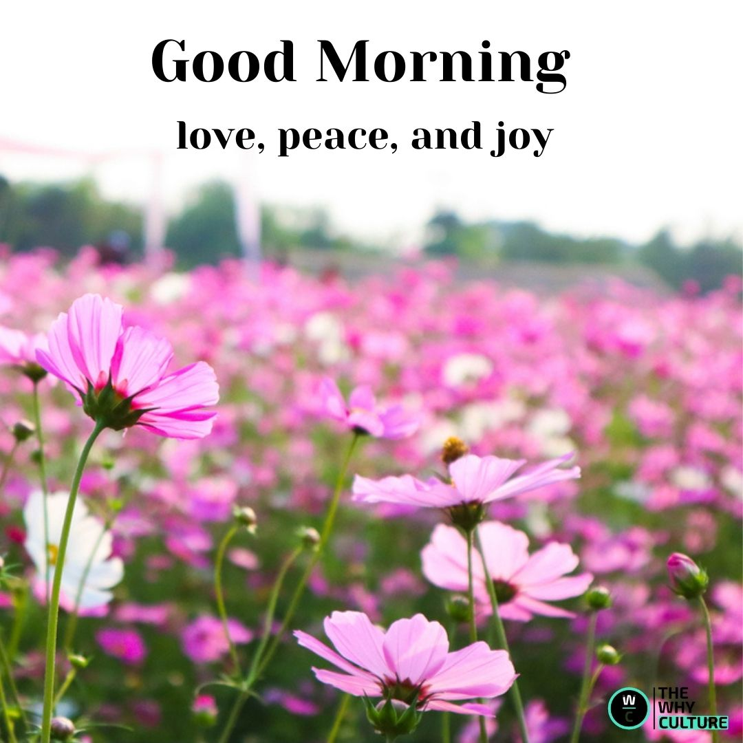 different good morning wishes
