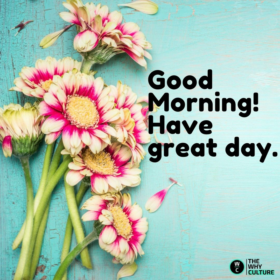 Good Morning wishes flowers